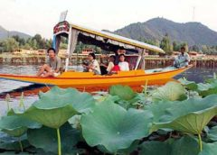 Foreign tourists stay away as unrest continues in Kashmir