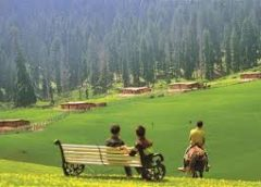 Tourism properties, resorts 'No-polythene zones': Director Tourism Mehmood Shah