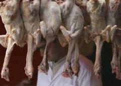 """Modern """"Halal"""" meat is a mockery of Islam"""