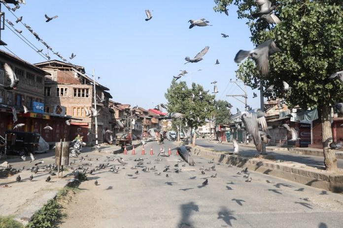 During last 36 months, Kashmir faced 22 months of lockdown