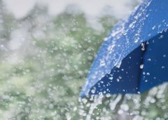 Light to moderate rain for the next few days in J&K: MET