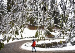 Upper reaches of Kashmir Valley received season's first snowfall