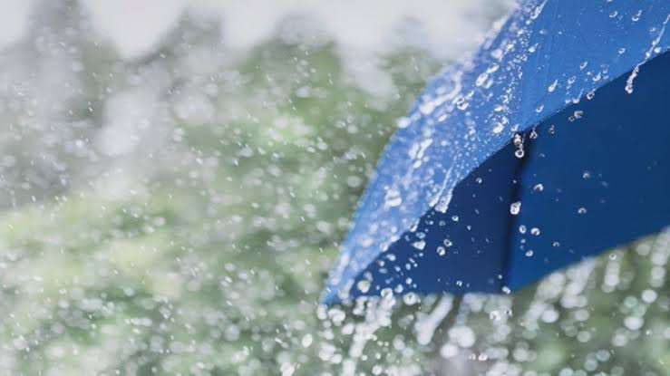 Light to moderate rain for the next few days in J&K - MeT