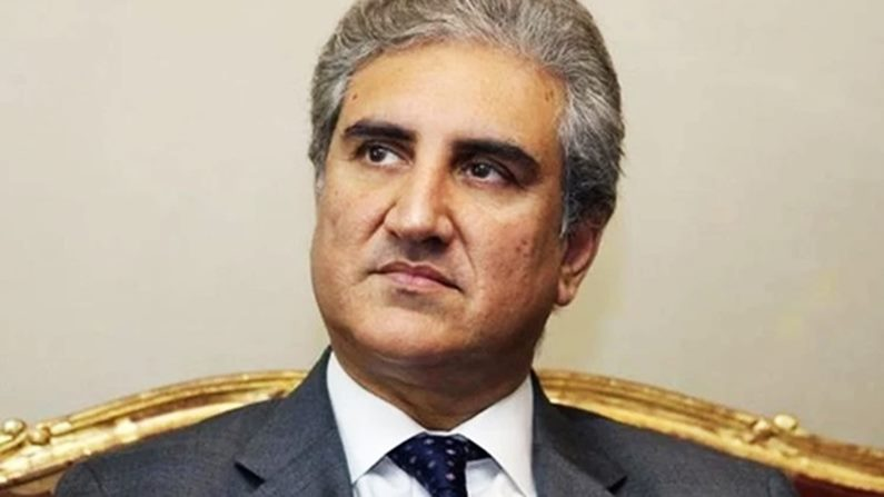Pakistan will oppose any move by India to 'Divide Kashmir' and change its demography - Shah Mahmood Qureshi